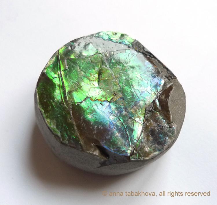 ammolite-3-anna-tabakhova-P1120392-copyrigh